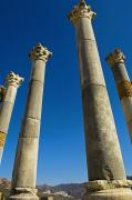 Moroccan Photos - Column In Capitol In Ancient Roman City by Axiom Photographic