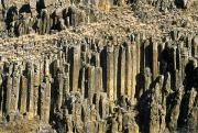 British Columbia Posters - Columnar Basalt, British Columbia Poster by David Nunuk