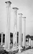 Byzantine Photos - Columns In The Central Courtyard And Stoa Gymnasium And Baths In The Ancient Site Of Salamis by Joe Fox