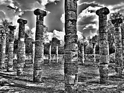White Pillars Posters - Columns of Support Poster by Douglas Barnard
