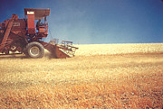 Prescott Originals - Combine Harvest 1961 by Dennis Jones