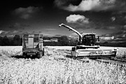 Combine Harvester Posters - Combine Harvester And Tractor Trailer In Barley Crop In A Field Ready For Harvesting County Donegal Poster by Joe Fox