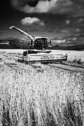 Combine Harvester Posters - Combine Harvester In Barley Crop In A Field Ready For Harvesting County Donegal Republic Of Ireland Poster by Joe Fox