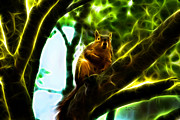 Squirrel Mixed Media - Come On Up - Fractal - Robbie the Squirrel by James Ahn