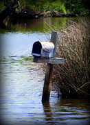 Mailboxes Framed Prints - Come Rain or Shine or Boat Framed Print by Karen Wiles
