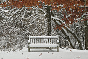 Shelley Myke Prints - Come Sit Awhile Print by Inspired Nature Photography By Shelley Myke