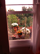 Window Bench Photos - Come To My Window by Kym Backland