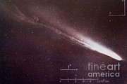Comet Framed Prints - Comet Kohoutek Framed Print by Science Source