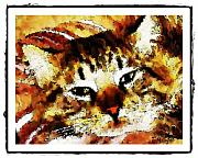Pets Art Digital Art - Comfy Kitty by Terry Mulligan