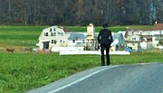 Amish Farmer Photos - Coming Home by Debbi Granruth