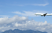 Air Travel Photos - Commercial Airliner Coming in For a Landing by Marlene Ford