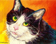 Black And White Cats Paintings - Commission Your Pets Portrait By Artist Carole Spandau Bfa Ecole Des Beaux Arts  by Carole Spandau