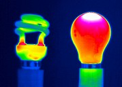 Light Bulbs Prints - Comparing Light Bulbs, Thermogram Print by Tony Mcconnell