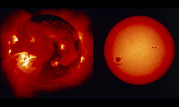 Whole Sun Art - Comparison Of Visible & X-ray Images Of Sun by Nasajisas