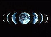 Moon Phases Prints - Composite Image Of The Phases Of The Moon Print by Dr Fred Espenak