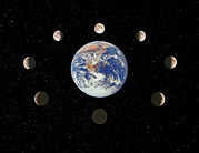 Moon Phases Prints - Composite Image Of The Phases Of The Moon Print by John Sanford