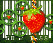 Strawberry Art Metal Prints - Conceptual Image Of Genetically-engineered Fruit Metal Print by Victor Habbick Visions