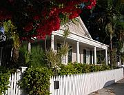 Florida Flowers Photos - Conch House in Key West by Susanne Van Hulst