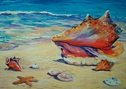 Clarke Paintings - Conch Shell by John Clark