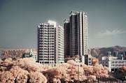 Concrete Highrise Buildings Print by Yiu Yu Hoi