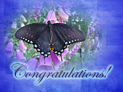 Foxglove Flowers Prints - Congratulations Greeting Card - Spicebush Swallowtail Butterfly Print by Mother Nature