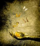 Butterflies Photos - Connect by Photodream Art