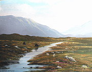 Connemara Paintings - Connemara Bog Light by Cathal O malley