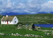 The White House Prints - Connemara, Co Galway, Ireland Cottages Print by The Irish Image Collection