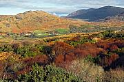 Connemara Framed Prints - Connemara mountains in the autumn Ireland Framed Print by Pierre Leclerc
