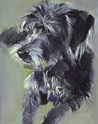 Dog Paintings - Connie by Sally Muir