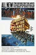 1970s Poster Art Framed Prints - Conquest Of The Planet Of The Apes Framed Print by Everett