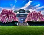 Bronx Prints - Conservatory In Spring Print by Chris Lord