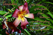 Inspirational Note Cards Posters - Consider the Lilies Poster by Larry Bishop