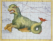 Antique Drawings - Constellation of Cetus the Whale by James Thornhill