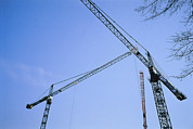 Cranes And Derricks Etc. Art - Construction Cranes Stand by Stephen Alvarez