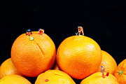 Miniature Digital Art - Construction on oranges by Mingqi Ge