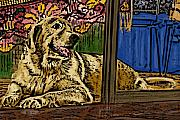 Golden Retriever Mixed Media - Contemplating by Bibi Romer
