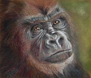 Endangered Pastels Prints - Contemplating Life Print by Ceci Watson