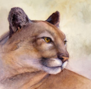 Mountain Lion Paintings - Contemplation by Bonnie Rinier