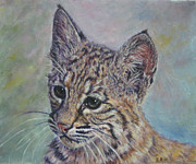 Baby Bobcat Framed Prints - Contemplation Framed Print by Elizabeth Rieke Hefley