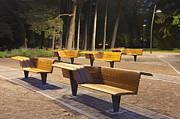 Park Benches Framed Prints - Contemporary Benches at a Park Framed Print by Jaak Nilson