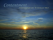 Motivational Posters Posters - Contentment Poster by Michelle Calkins