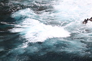 Converge Prints - Converging Waters Print by Terri Thompson
