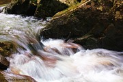 Cool Mountain Stream Print by Laurinda Bowling