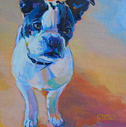 Boston Terrier Art Paintings - Cooper by Kimberly Santini