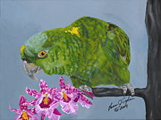 Amazon Parrot Paintings - Cooper by Lana Tyler