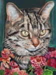 Oil Cat Paintings - Cooper the Cat by Enzie Shahmiri