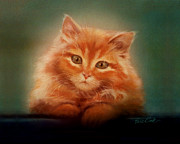 Orange Pastels Framed Prints - Copper-colored Kitty Framed Print by Evie Cook