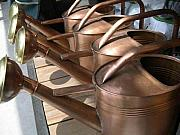 Shower Pyrography - Copper Watering Cans by Rebecca Marona