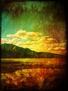 All Acrylic Prints - Coppered Reflections by Leah Moore